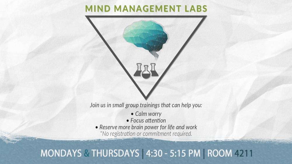 mind-management-labs-ds