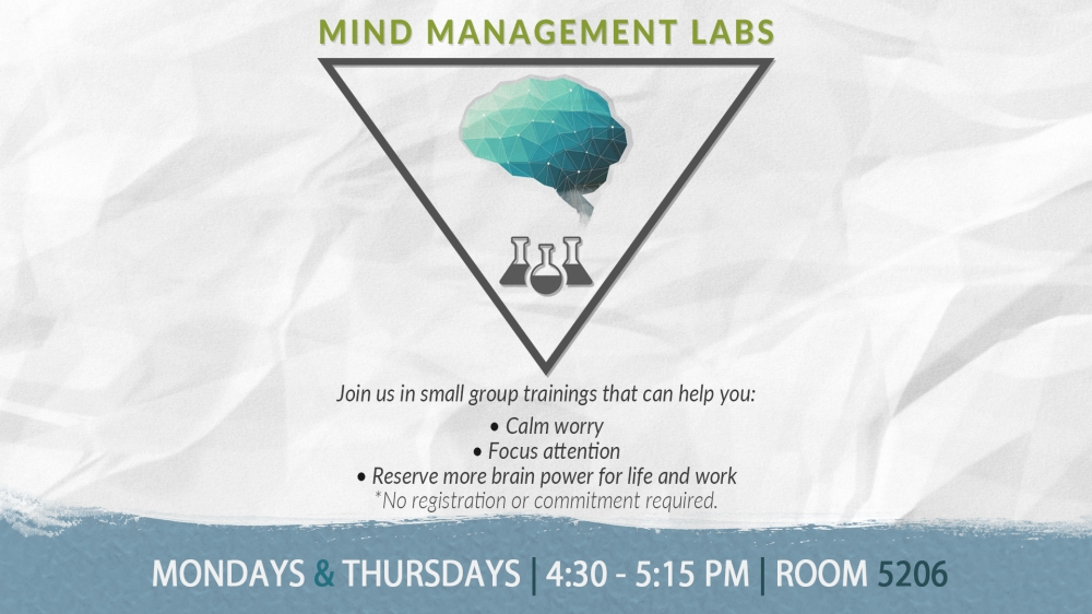 mind-management-labs-ds-spring-17